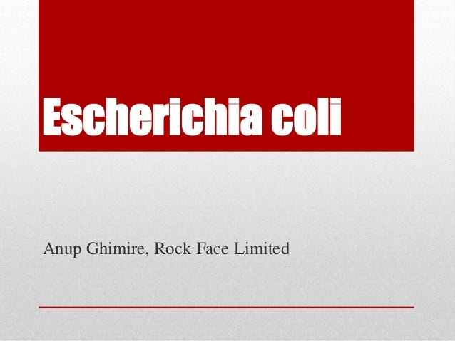 Escherichia coli Anup Ghimire, Rock Face Limited