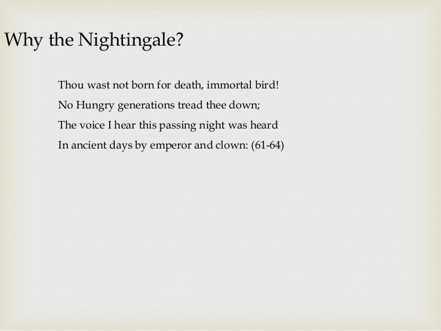 ode to a nightingale john keats presentation 10 why the nightingale