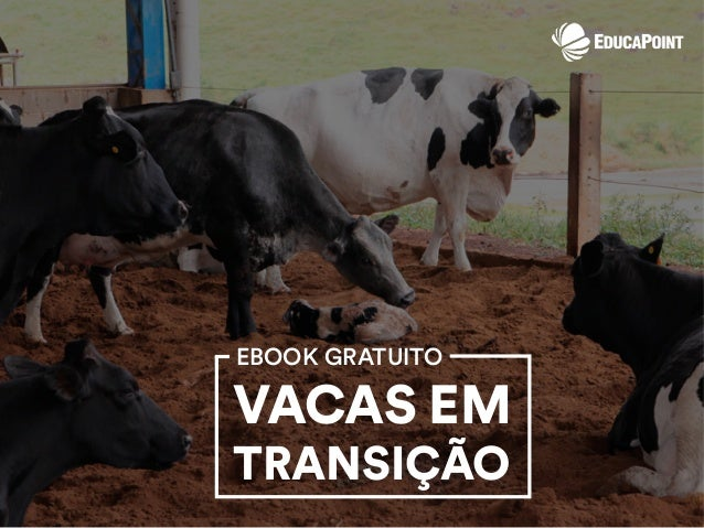 EBOOK GRATUITO VACAS EM TRANSIÇÃO
