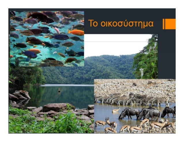 Marketing in the e-business eco-system  (in Greek) Slide 2