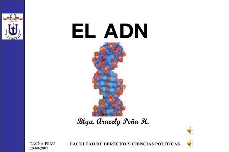 EL ADN Blga. Aracely Peña H.