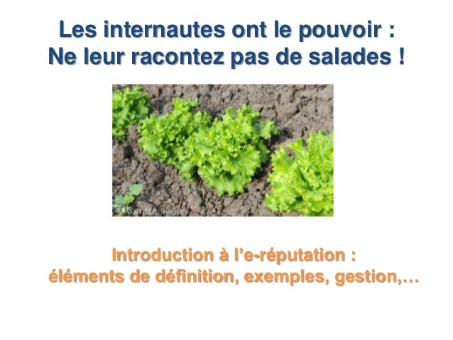Les internautes ont le pouvoir :Ne leur racontez pas de salades !      Introduction à l'e-réputation :éléments de définiti...