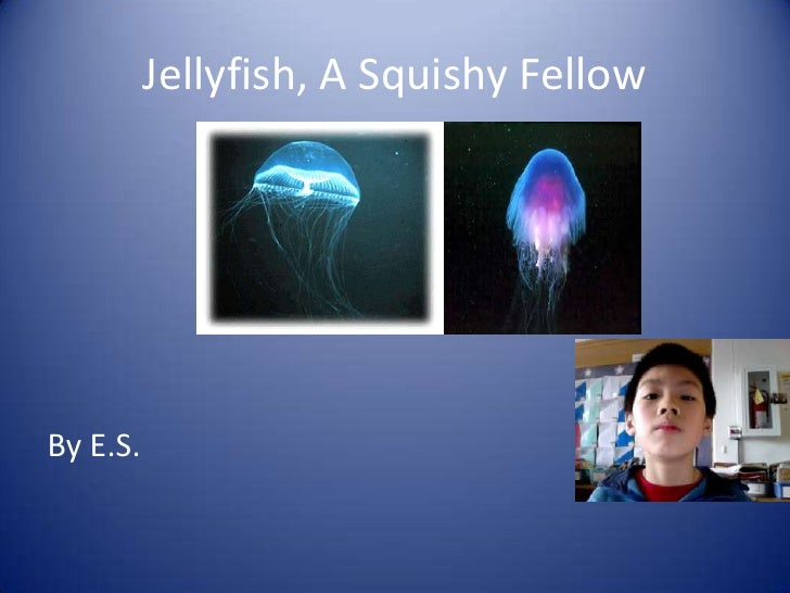 Jellyfish, A Squishy Fellow <br />By E.S.<br />