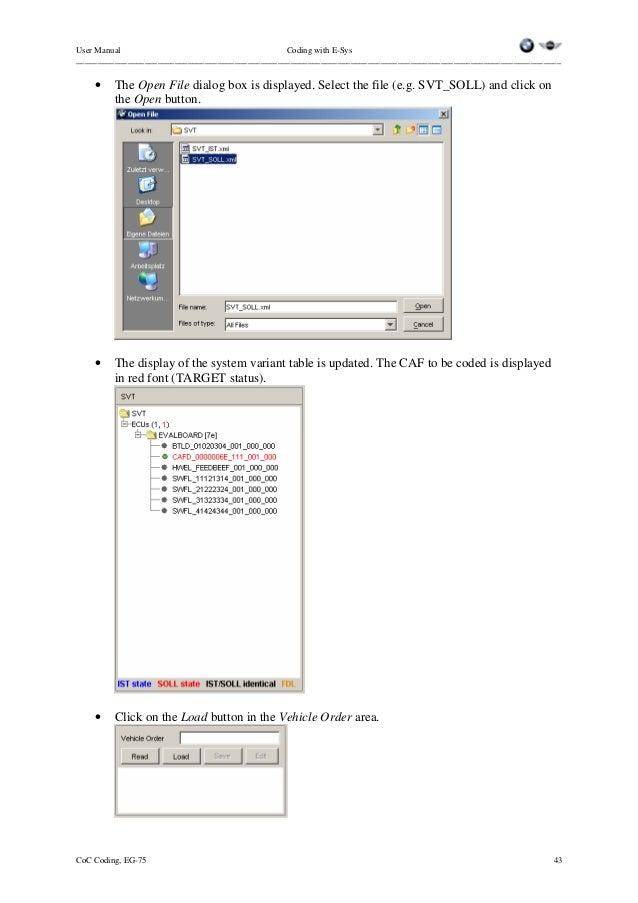 sfi coding manual