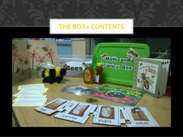 THE BOX+ CONTENTS
