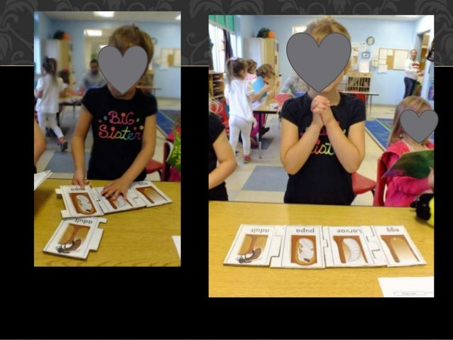 HONEY BAR CHART For this activity the children were able to sample two different types of honey. They then decided which h...