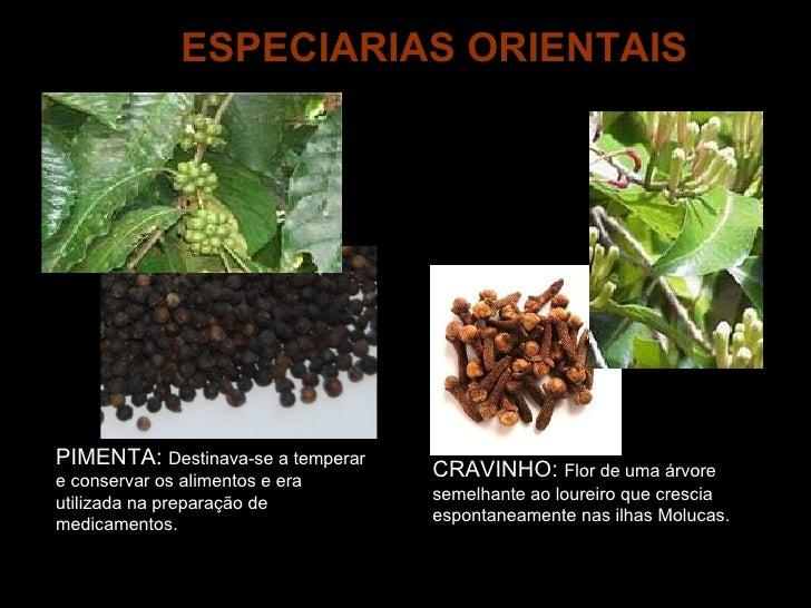 PIMENTA:  Destinava-se a temperar e conservar os alimentos e era utilizada na preparação de medicamentos. CRAVINHO:  Flor ...