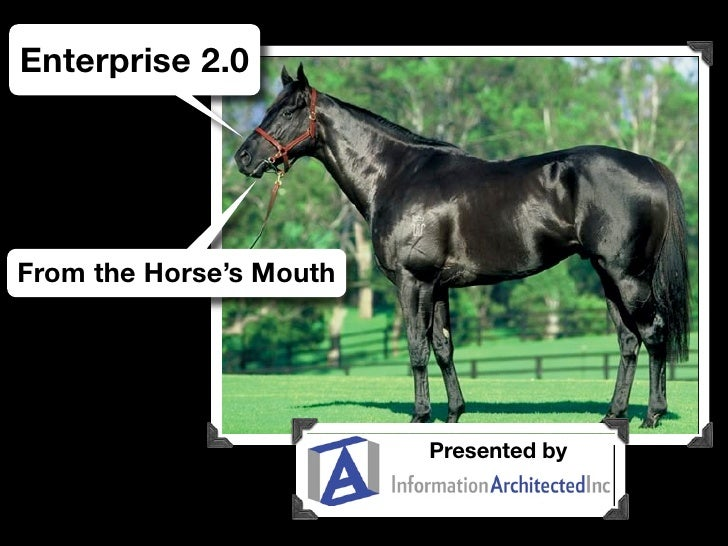 Enterprise 2.0: Straight From The Horse's Mouth