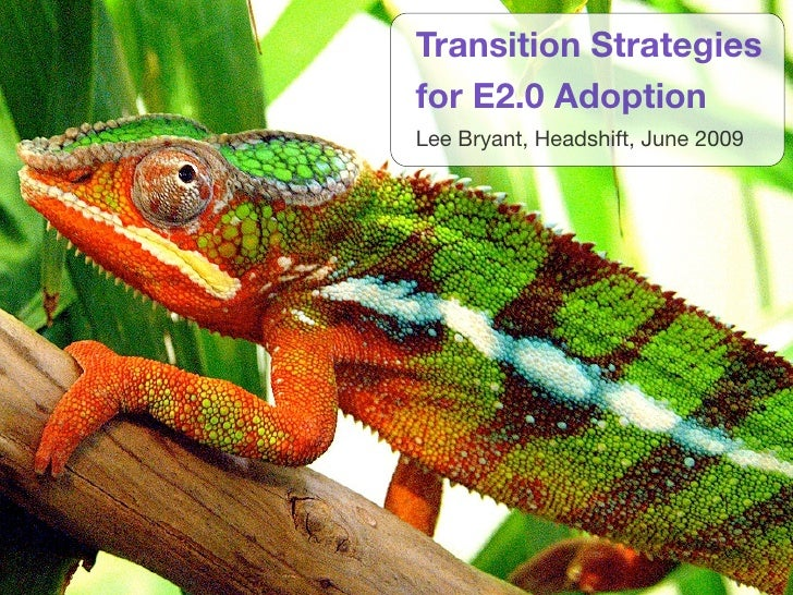 Transition Strategies for E2.0 Adoption Lee Bryant, Headshift, June 2009