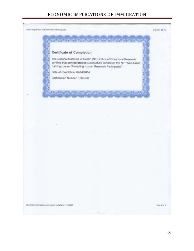 immigration research paper