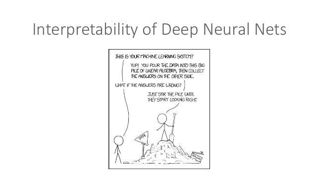 InterpretabilityofDeepNeuralNets