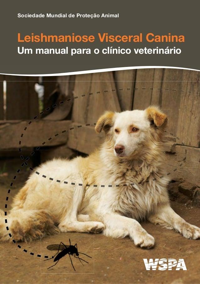 Leishmaniose Visceral Canina Um manual para o clínico veterinário Sociedade Mundial de Proteção Animal
