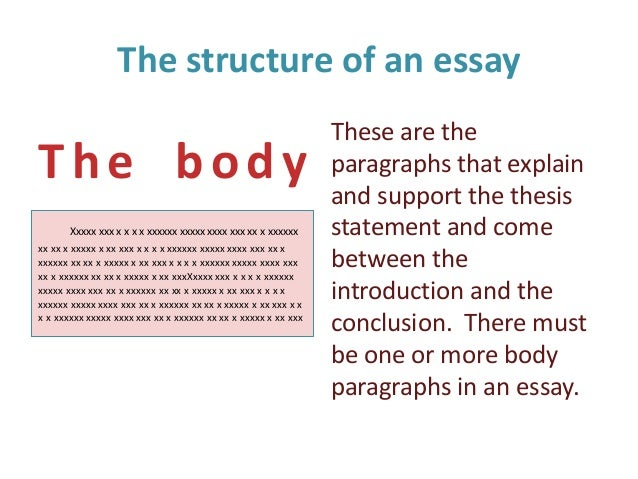 e m what is an essay the introduction 4 the structure of an essay