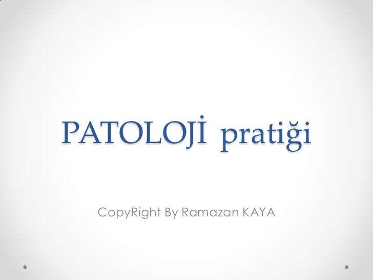 PATOLOJİpratiği<br />CopyRight By Ramazan KAYA<br />
