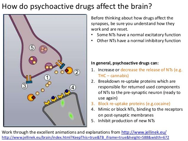 Supplements to treat brain fog picture 1