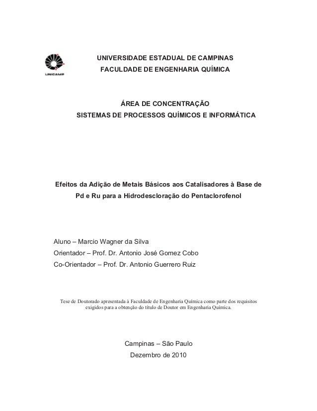 UNIVERSIDADE ESTADUAL DE CAMPINAS FACULDADE DE ENGENHARIA QUÍMICA ÁREA DE CONCENTRAÇÃO SISTEMAS DE PROCESSOS QUÍMICOS E IN...