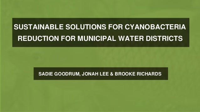SUSTAINABLE SOLUTIONS FOR CYANOBACTERIA REDUCTION FOR MUNICIPAL WATER DISTRICTS SADIE GOODRUM, JONAH LEE & BROOKE RICHARDS