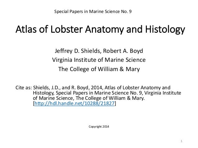 Atlas of Lobster Anatomy and Histology Jeffrey D. Shields, Robert A. Boyd Virginia Institute of Marine Science The College...