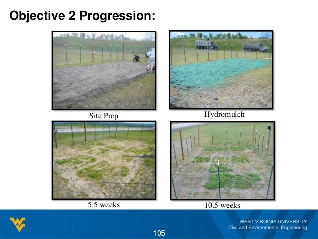 Objective 2 Progression: Site Prep Hydromulch 5.5 weeks 10.5 weeks 105