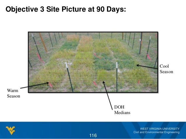 Objective 3 Site Picture at 90 Days: 116 Warm Season DOH Medians Cool Season