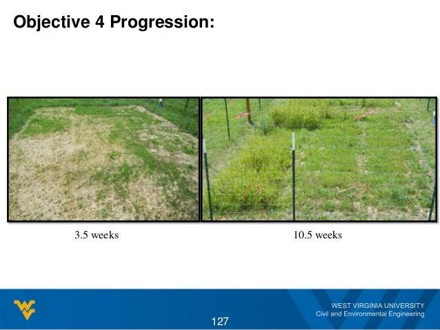 Objective 4 Progression: 3.5 weeks 10.5 weeks 127