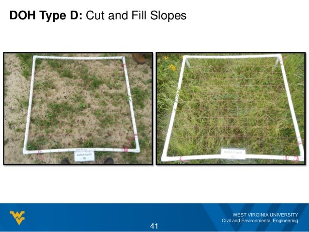 DOH Type D: Cut and Fill Slopes 41