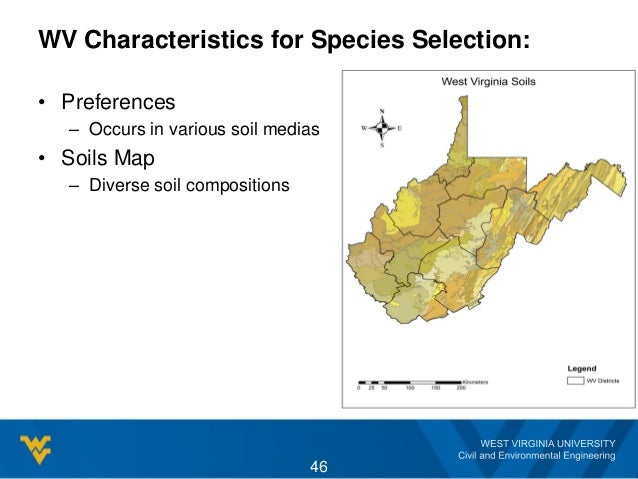 WV Characteristics for Species Selection: • Preferences – Occurs in various soil medias • Soils Map – Diverse soil composi...