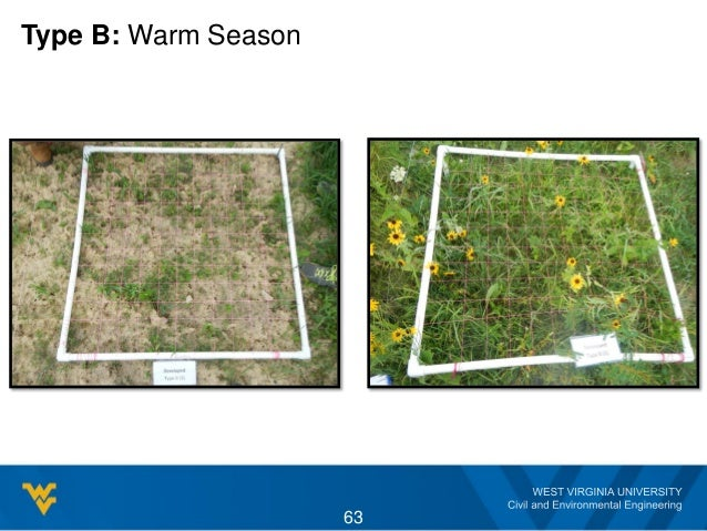Type B: Warm Season 63