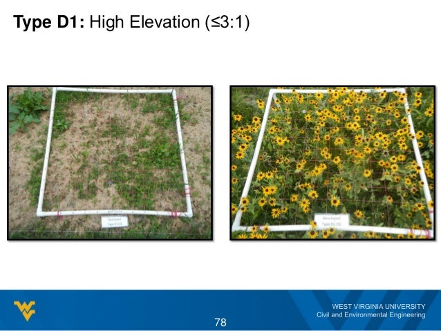 Type D1: High Elevation (≤3:1) 78