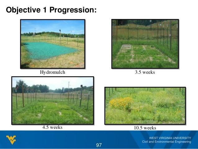 Objective 1 Progression: Hydromulch 3.5 weeks 4.5 weeks 10.5 weeks 97