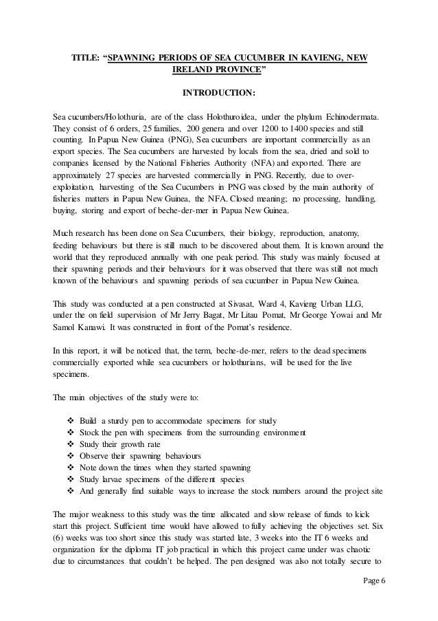 IT REPORT-2012 (RYAN IVARAMI-DFMR YEAR 3)