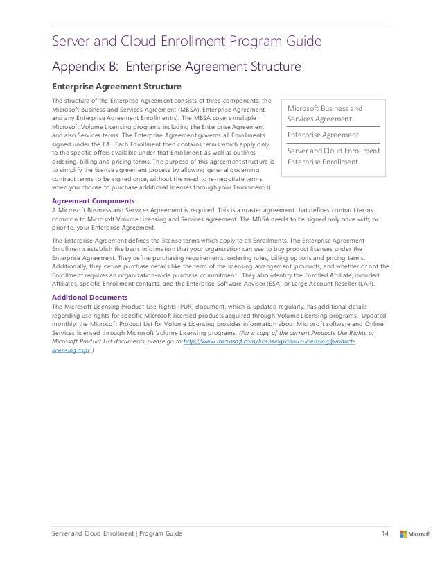 microsoft volume licensing program guide