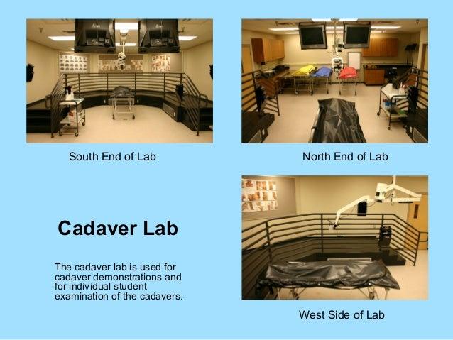 Phoenix College Cadaver Lab and Anatomy & Physiology Lab