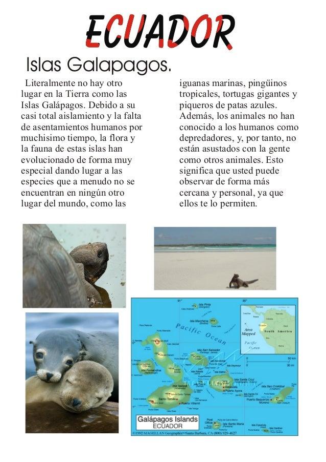 Islas Galapagos.Literalmente no hay otro iguanas marinas, pingüinoslugar en la Tierra como las tropicales, tortugas gigant...