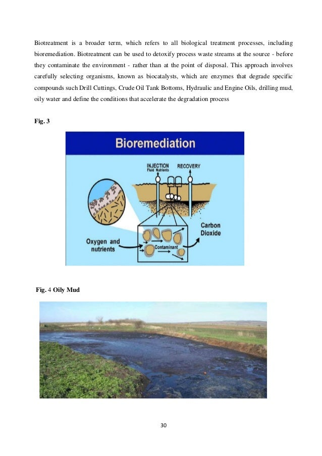 bioremediation and petroleum hydrocarbons essay Bioremediation and petroleum hydrocarbons essay removed by physical means, this does not dispose of the dangerous petroleum hydrocarbons bioremediation offers an efficient solution for cleaning up oil spills.