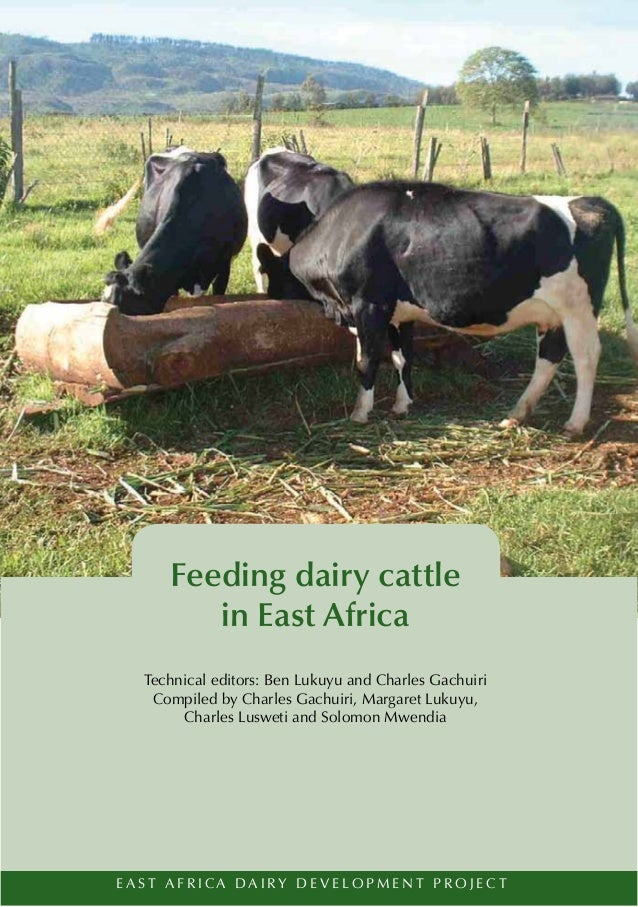 Feeding dairy cattle           in East Africa    Technical editors: Ben Lukuyu and Charles Gachuiri     Compiled by Charle...