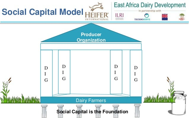essay project east africa No 105 - april 2010 smallholder agriculture in east africa: trends, constraints and opportunities adeleke salami, abdul b kamara and zuzana brixiova.