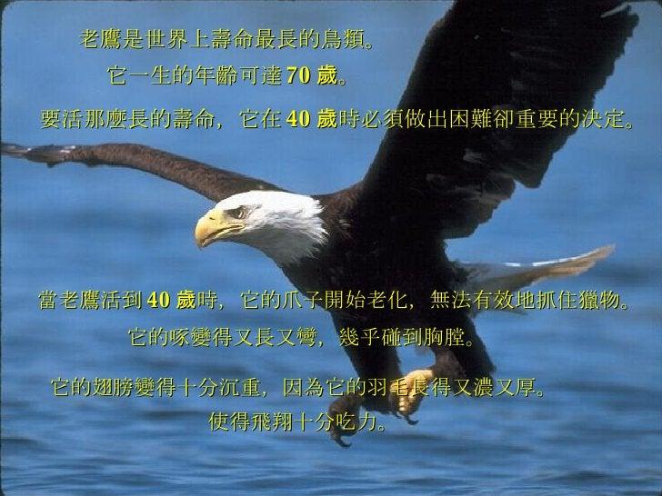 老鷹是世界上壽命最長的鳥類。 當老鷹活到 40 歲時,它的爪子開始老化,無法有效地抓住獵物。 它一生的年齡可達 70 歲。 要活那麼長的壽命,它在 40 歲時必須做出困難卻重要的決定。 它的啄變得又長又彎,幾乎碰到胸膛。 它的翅膀變得十分沉重,...