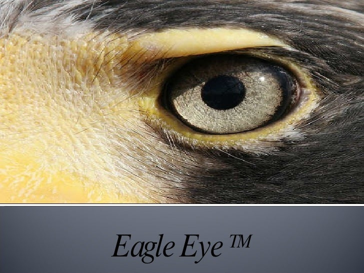 Eagle Eye  TM