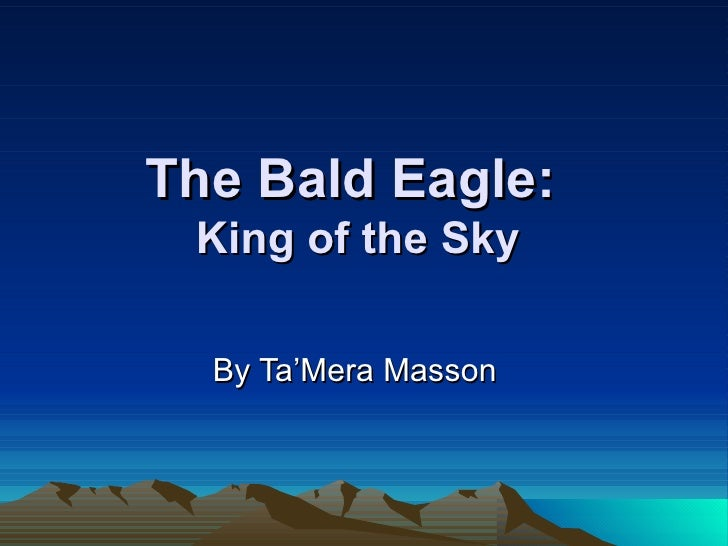 The Bald Eagle:  King of the Sky By Ta'Mera Masson