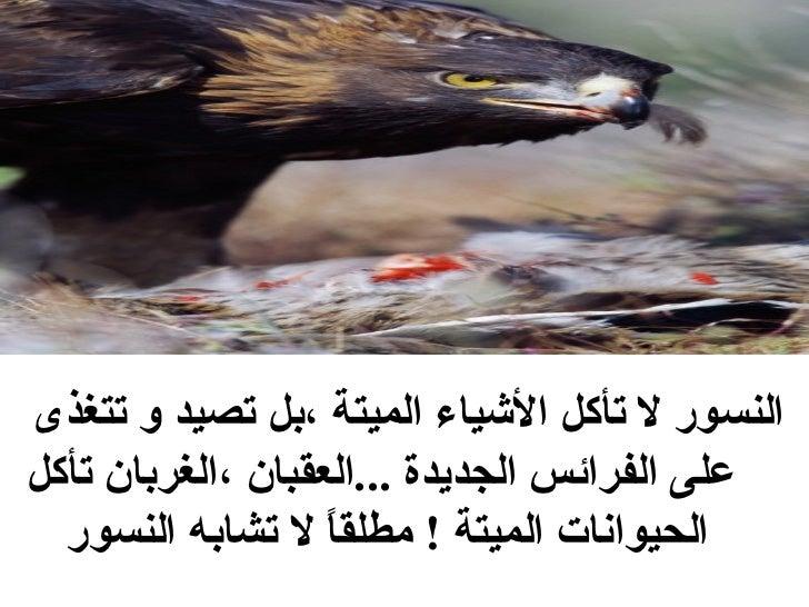 <ul><li>النسور لا تأكل الأشياء الميتة ،بل تصيد و تتغذى على الفرائس الجديدة  ... العقبان ،الغربان تأكل الحيوانات الميتة  ! ...