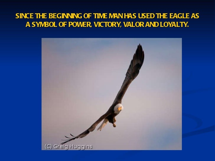 Eagle Scout Court Of Honor Powerpoint