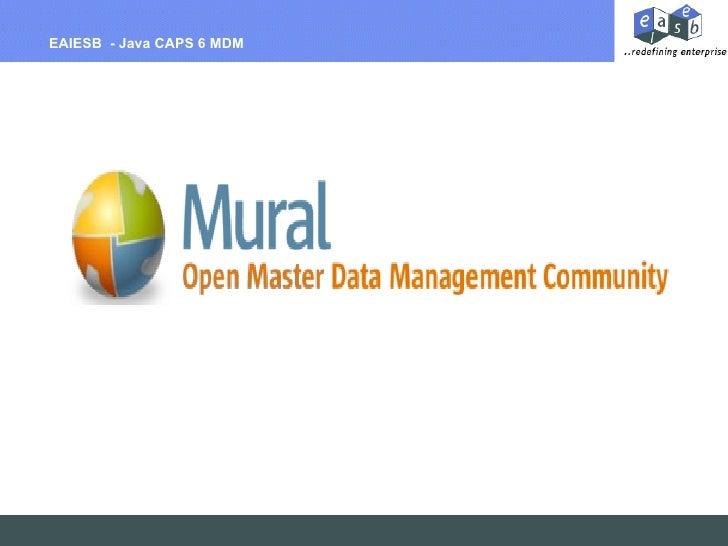Billing Per Hour EAIESB  - Java CAPS 6 MDM