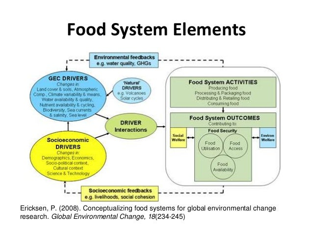 Towards Precepts of Food System Sustainability