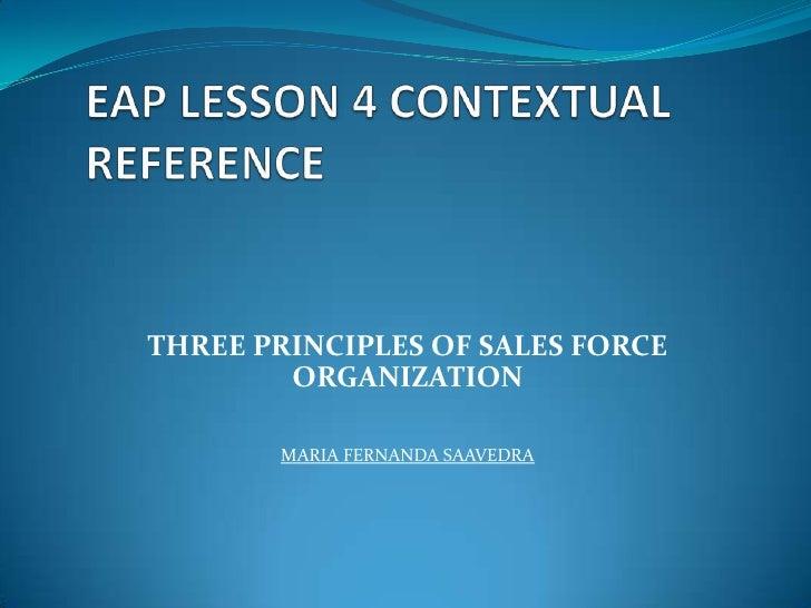 THREE PRINCIPLES OF SALES FORCE        ORGANIZATION       MARIA FERNANDA SAAVEDRA