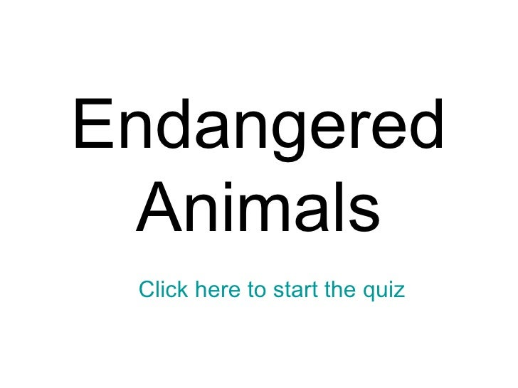 Endangered Animals Click here to start the quiz