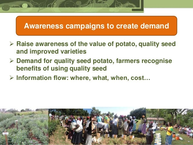 Cip S Potato Strategy For Africa Improving Livelihoods Of