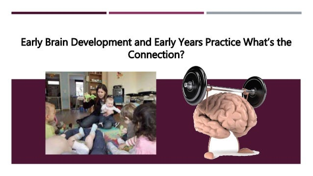Early Brain Development and Early Years Practice What's the Connection?