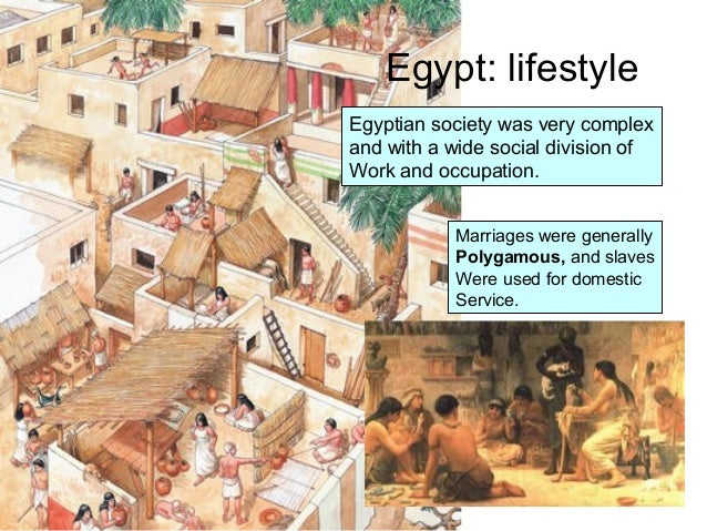 social life of egyptian civilization The egyptian elite hired hairdressers and  jewellery was worn by the elite for self-adornment and as an indication of social  civilization | daily life.
