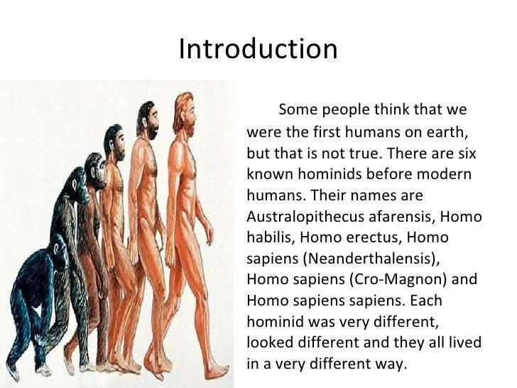 Homo Erectus Shelter